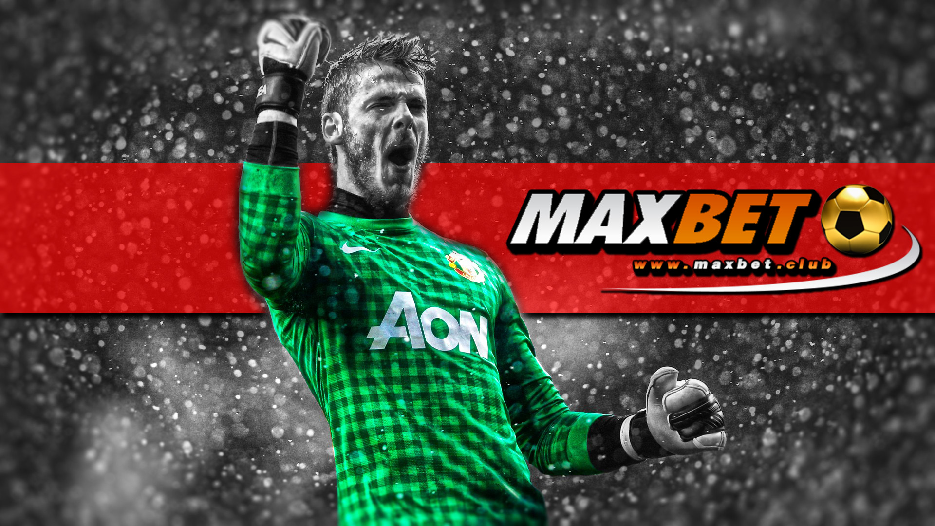 maxbet-promotion-new
